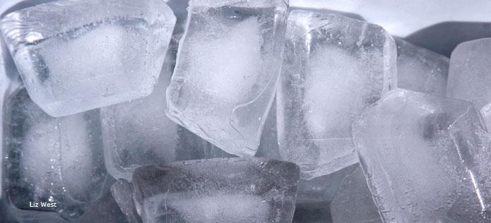 ice_cubes_Liz_West_695x316